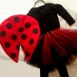Cómo hacer un disfraz de mariquita casero